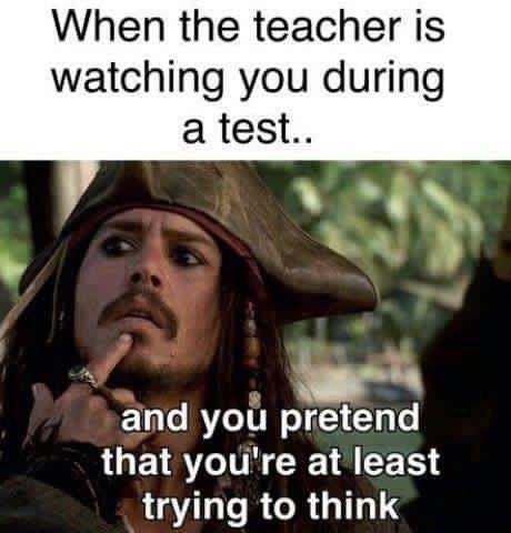 study memes